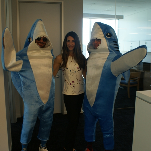 Sharks and Chief People Officer