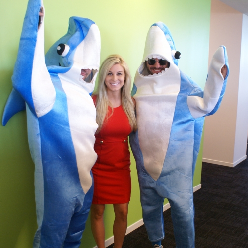 Recruiter Sharks